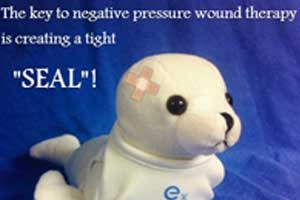 DMP_Blog-FeatureImage-SealSeal